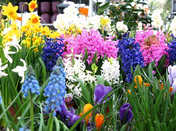 le_jardinier_3
